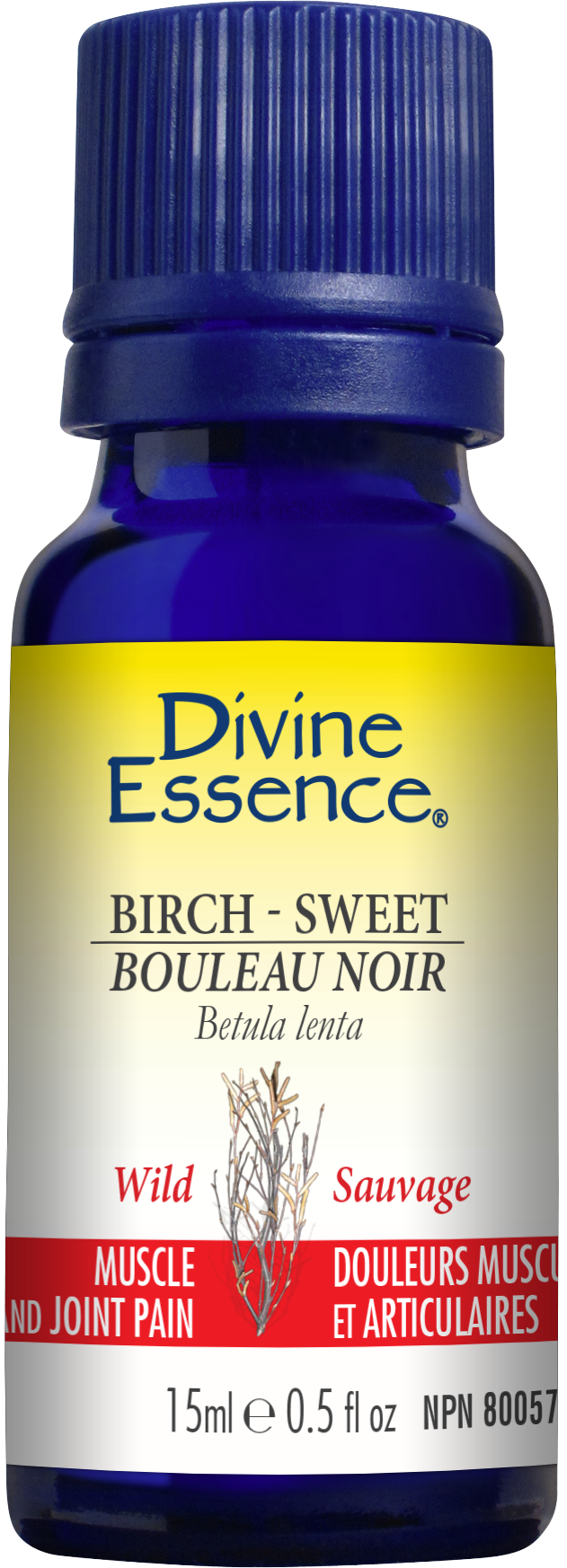 Birch - Sweet 15ml